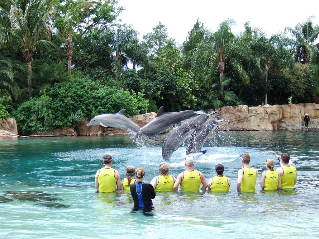 Discovery Cove Tops The World Attraction Chasers