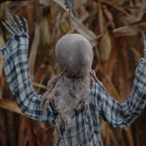 Haunted Hunt Club Farm - Field of Screams - 2014