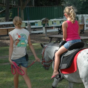 Hunt Club Farm - Pony Rides
